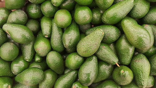 Fruit Drop from Avocado Tree | Pat Welsh Organic and
